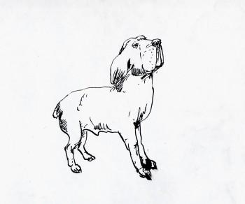 desenho-073